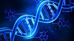 LA PROVA GENETICA NEL PROCESSO PENALE: NECESSITA' DI CRITERI OGGETTIVI PER LA VALUTAZIONE DA PARTE DEL MAGISTRATO